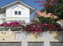 Biệt thự đẹp Quận 9 khu dầu khí ngay Nguyễn Duy Trinh