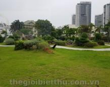 Bán hai biệt thự đẹp và 10 lô đất biệt thự đường Giang Văn Minh An Phú Quận 2