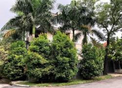 Bán biệt thự Thảo Điền khu Thảo Điền 1 đường Nguyễn Văn Hưởng