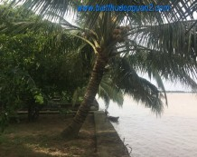 Bán nhà vườn bờ sông Sài Gòn Long Phước Quận 9