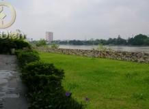 Bán đất biệt thự Thảo Điền Quận 2
