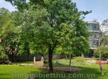 Cho thuê biệt thự đẹp đường số 6 nội bộ Trần Ngọc Diện Thảo Điền
