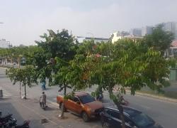 Bán đất mặt tiền Lương Định Của khu dân cư hiện hữu xây cao tầng
